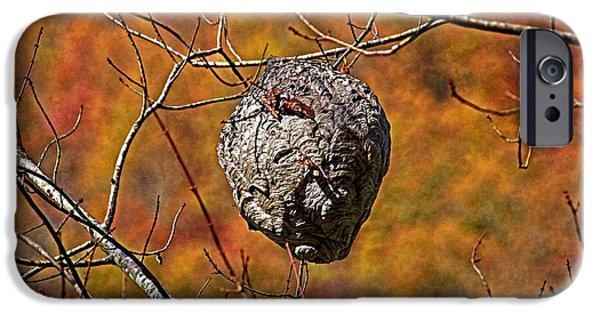 Hornets Nest iPhone Cases - Hornets Nest iPhone Case by HH Photography of Florida