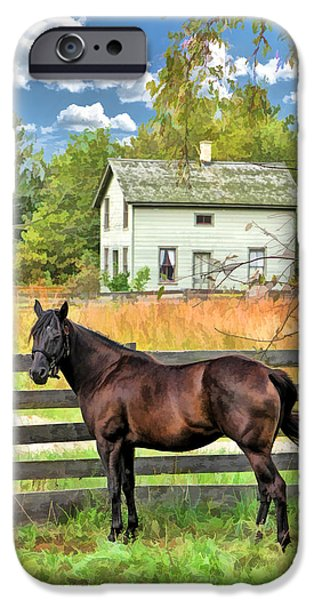 Old Barn Paintings iPhone Cases - Horse and Barn at Old World Wisconsin iPhone Case by Christopher Arndt