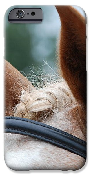 Horse at Attention iPhone Case by Jennifer Lyon