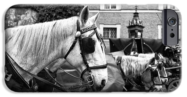 Horse And Buggy Photographs iPhone Cases - Horse Blinders  iPhone Case by John Rizzuto