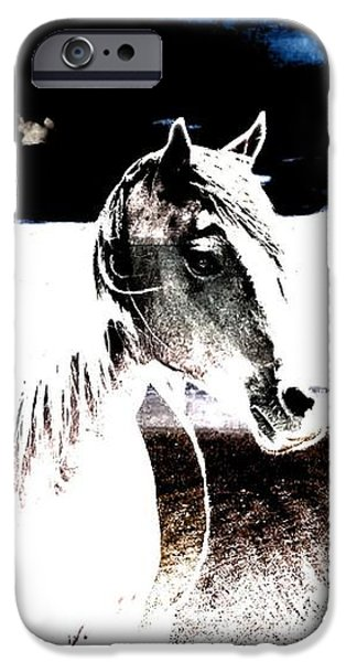 Beach Landscape iPhone Cases - Horse On Stormy Beach iPhone Case by Annie Zeno