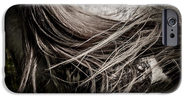 Gray Hair iPhone Cases - Horse Tail iPhone Case by Heather Pugh