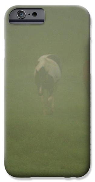 Horses Grazing In The Mist iPhone Case by Steve Gadomski