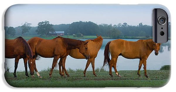 Horse Tapestries - Textiles iPhone Cases - Horses on the Walk iPhone Case by James Hennis