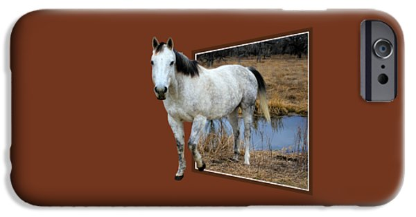 Creek Mixed Media iPhone Cases - Horsing Around iPhone Case by Shane Bechler