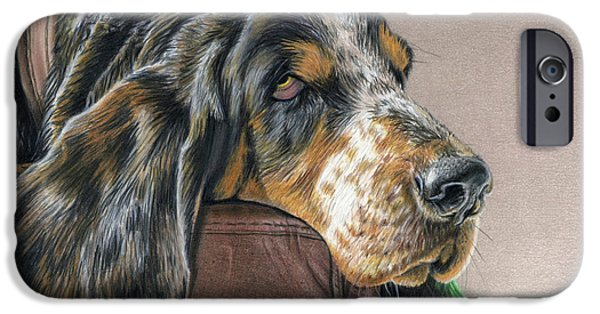 Animal Drawings iPhone Cases - Hound Dog iPhone Case by Sarah Batalka