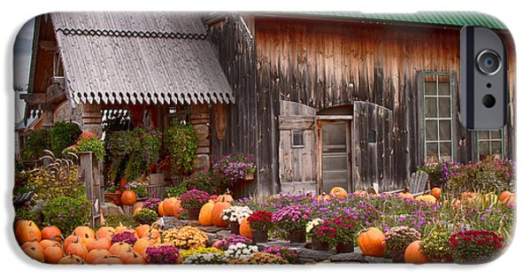 Farm Stand iPhone Cases - Hudaks Cider mill and farmstand iPhone Case by Jeff Folger