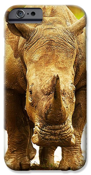 Huge South African rhino iPhone Case by Anna Omelchenko
