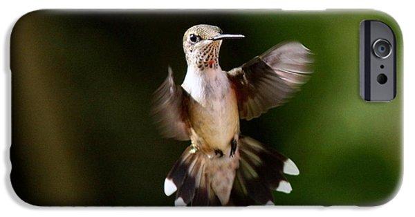 Small iPhone Cases - Hummingbird - Airborne iPhone Case by Travis Truelove