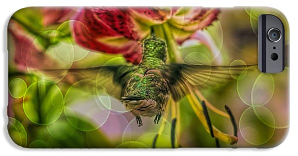 Florescent Lighting Digital iPhone Cases - Hummingbird And Pendant Flower With Overlay  iPhone Case by Geraldine Scull