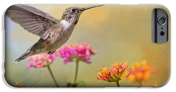 Garden Scene iPhone Cases - Hummingbird in the Garden iPhone Case by Bonnie Barry