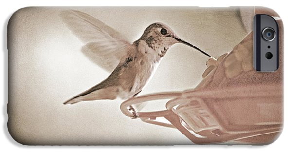 White House iPhone Cases - Hummingbird iPhone Case by Tina Wentworth