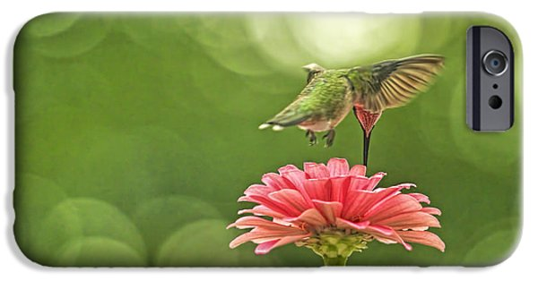 Buy iPhone Cases - Hummingbird With Zinnia  iPhone Case by Geraldine Scull