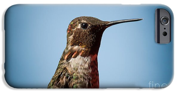 Little iPhone Cases - Hummingbirds portrait  iPhone Case by Max Rose