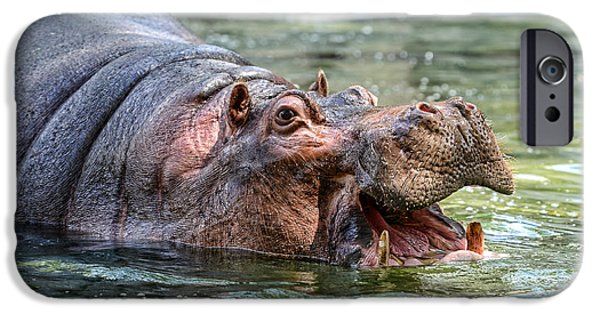 Hungry iPhone Cases - Hungry Hungry Hippo iPhone Case by Paul Ward