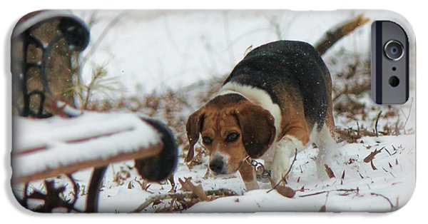 Dogs iPhone Cases - Hunt in the Snow iPhone Case by Sherry Bowen