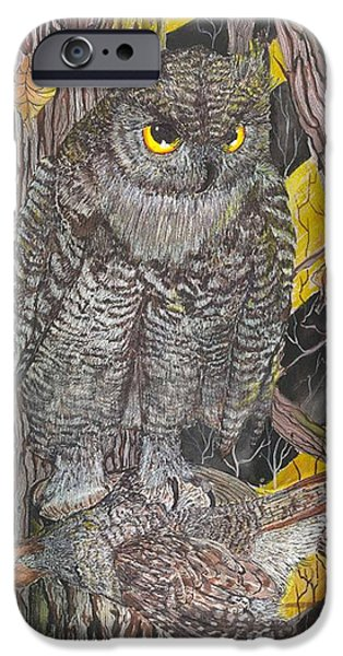 Nature Study Paintings iPhone Cases - Hunting Owl iPhone Case by Darren Cannell