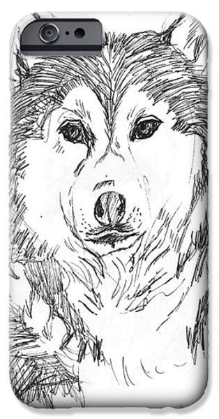 Husky Drawings iPhone Cases - Husky iPhone Case by Charme Curtin