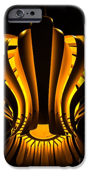 Abstractions iPhone Cases - Hydrozoa iPhone Case by James Aiken