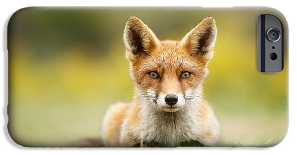 Juveniles iPhone Cases - HypnoFox iPhone Case by Roeselien Raimond