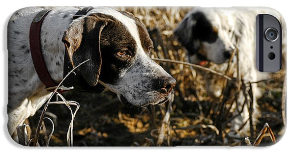 Setter Pointer iPhone Cases - I got your front you got my back iPhone Case by Chip Laughton