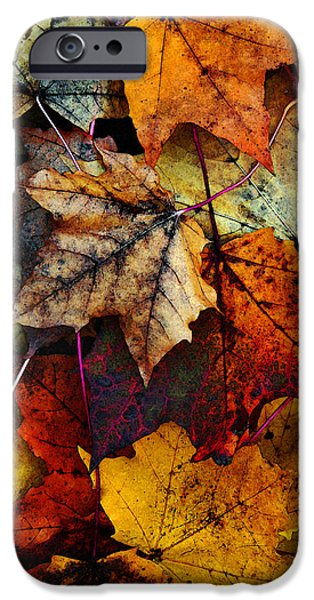 Card Digital Art iPhone Cases - I Love Fall 2 iPhone Case by Joanne Coyle