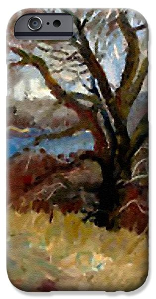 Concept Pastels iPhone Cases - I Passed a Tree on my Path  H b iPhone Case by Gert J Rheeders
