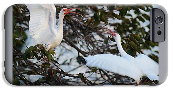 Time Pyrography iPhone Cases - Ibis Love Dance iPhone Case by Valia Bradshaw