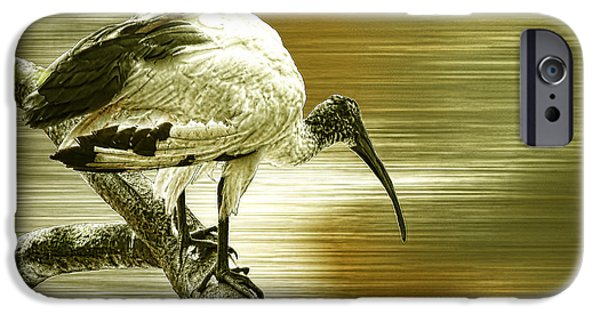 Ibis iPhone Cases - Ibis iPhone Case by Sharon Lisa Clarke
