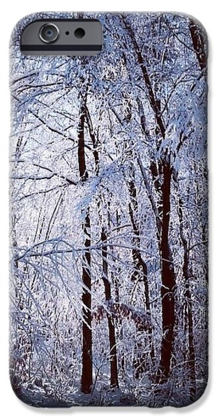 New England Snow Scene iPhone Cases - Ice Ladened Forest iPhone Case by Lynn-Marie Gildersleeve