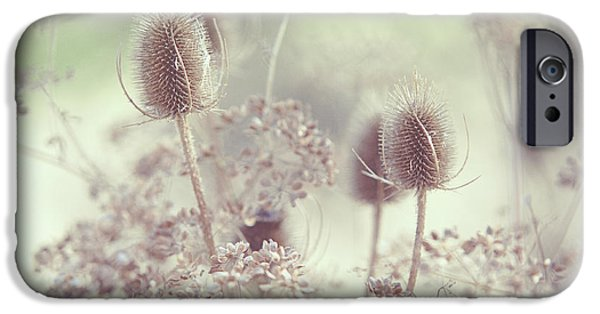 Poetic iPhone Cases - Icy Morning. Wild Grass iPhone Case by Jenny Rainbow