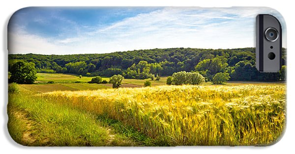 Agricultural iPhone Cases - Idyllic agricultural landscape summer view iPhone Case by Dalibor Brlek