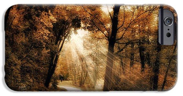 Autumn Woods iPhone Cases - Illumination iPhone Case by Jessica Jenney