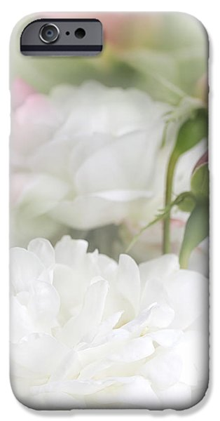 Illusions of White Roses and Pink Rosebuds iPhone Case by Jennie Marie Schell