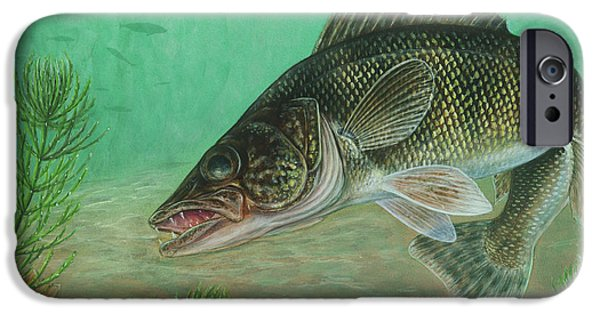 Walleye iPhone Cases - Illustration Of A Walleye Swimming iPhone Case by Carlyn Iverson