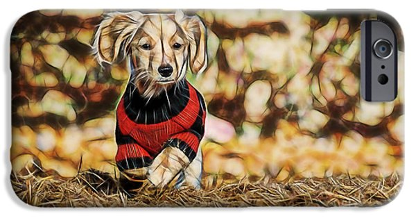 Puppy Love Framed Prints iPhone Cases - Im Here iPhone Case by Marvin Blaine