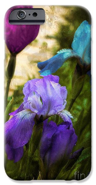 Fuschia iPhone Cases - Impossible Irises iPhone Case by Mindy Sommers