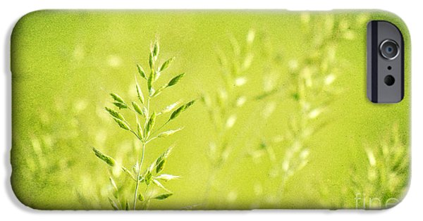 Flora Mixed Media iPhone Cases - Impression of gras iPhone Case by Angela Doelling AD DESIGN Photo and PhotoArt