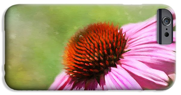 Cone Flowers iPhone Cases - Impressions of Summer iPhone Case by Kim Hojnacki