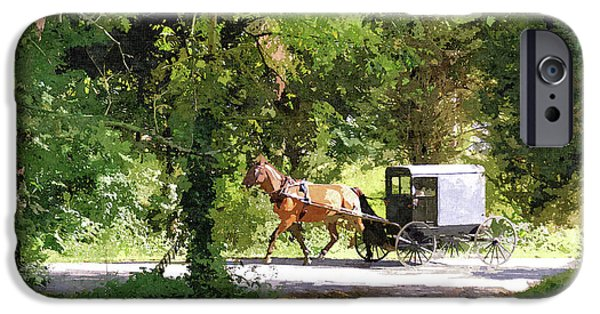Amish Photographs iPhone Cases - In Amish Country iPhone Case by John Trommer