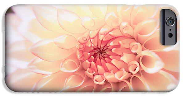 Floral Photographs iPhone Cases - In Love with Dahlia iPhone Case by Ana V  Ramirez