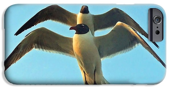 Flight iPhone Cases - In Tandem At Sunset iPhone Case by Sandi OReilly