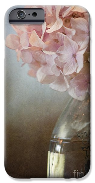 In The Country iPhone Case by Margie Hurwich