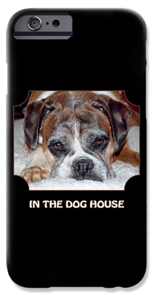 Dog Close-up iPhone Cases - In The Dog House - Black iPhone Case by Gill Billington