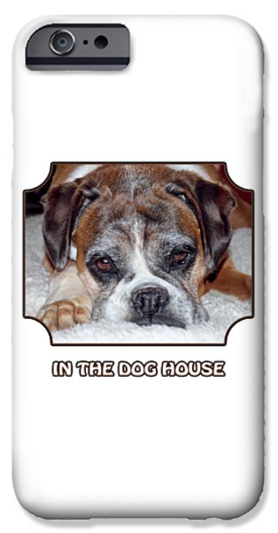 Dog Close-up iPhone Cases - In The Dog House - White iPhone Case by Gill Billington