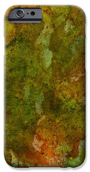 Raw Sienna iPhone Cases - In The Earth iPhone Case by Ken OToole