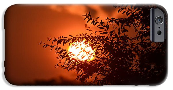 Morning iPhone Cases - In the Heat of the Morning iPhone Case by Maria Urso