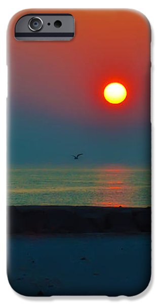 In the Morning Sun iPhone Case by Bill Cannon