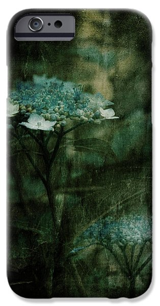 Luminescent iPhone Cases - In the Still of the Night iPhone Case by Bonnie Bruno