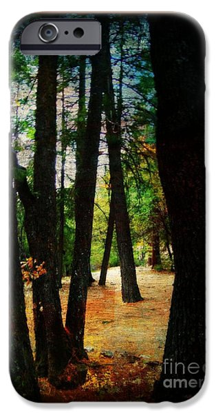 Pathway iPhone Cases - In the Trees Painting iPhone Case by Bobbee Rickard